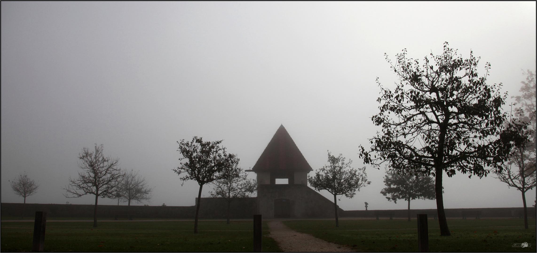 misty morning ll