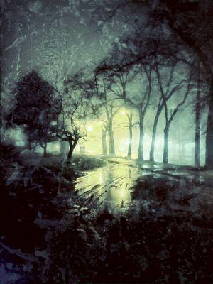 Misty-Rainy