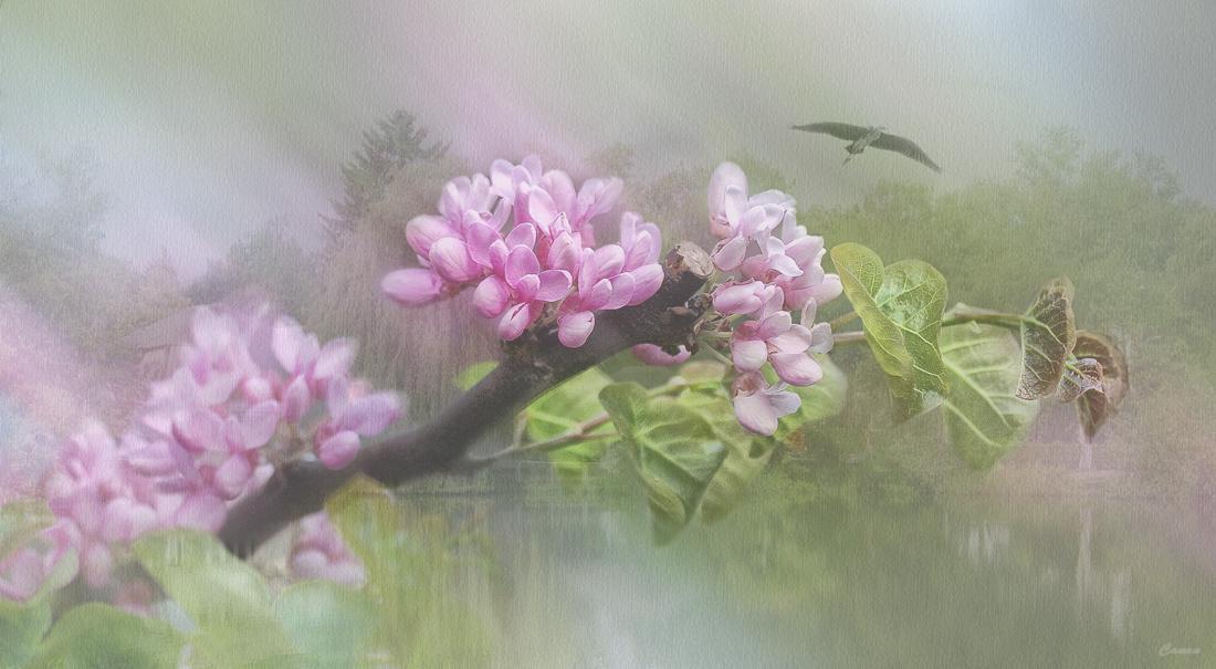 Misty Watercolor Memories..III