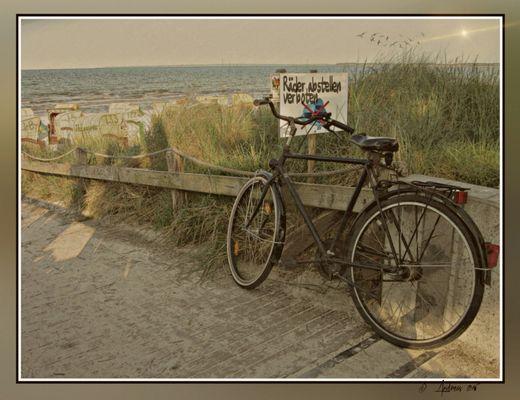 Mit dem Fahrrad ans Meer...