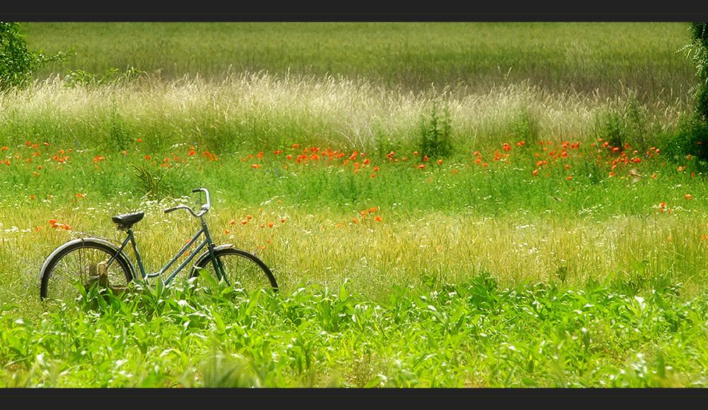 Mit dem Fahrrad zur Arbeit
