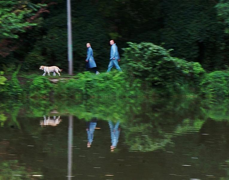 mit dem Hund unterwegs