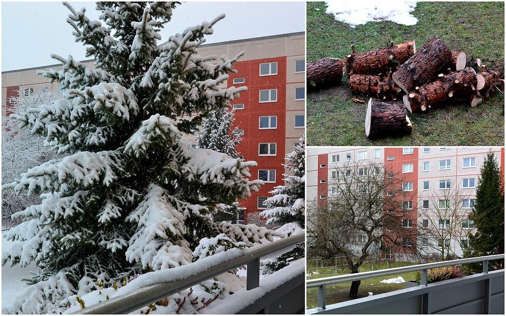 Mit dem letzten Schneefall…
