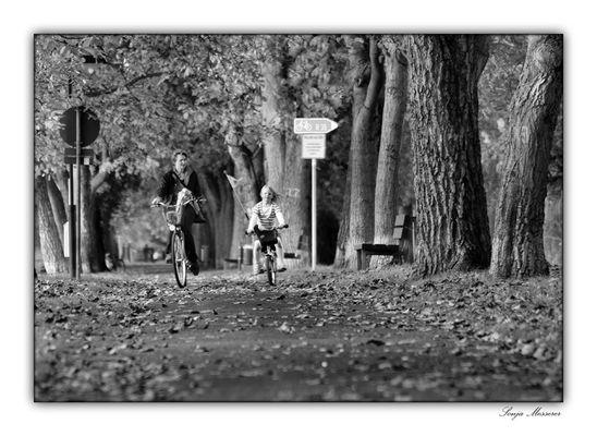 Mit dem Rad durch den Herbst