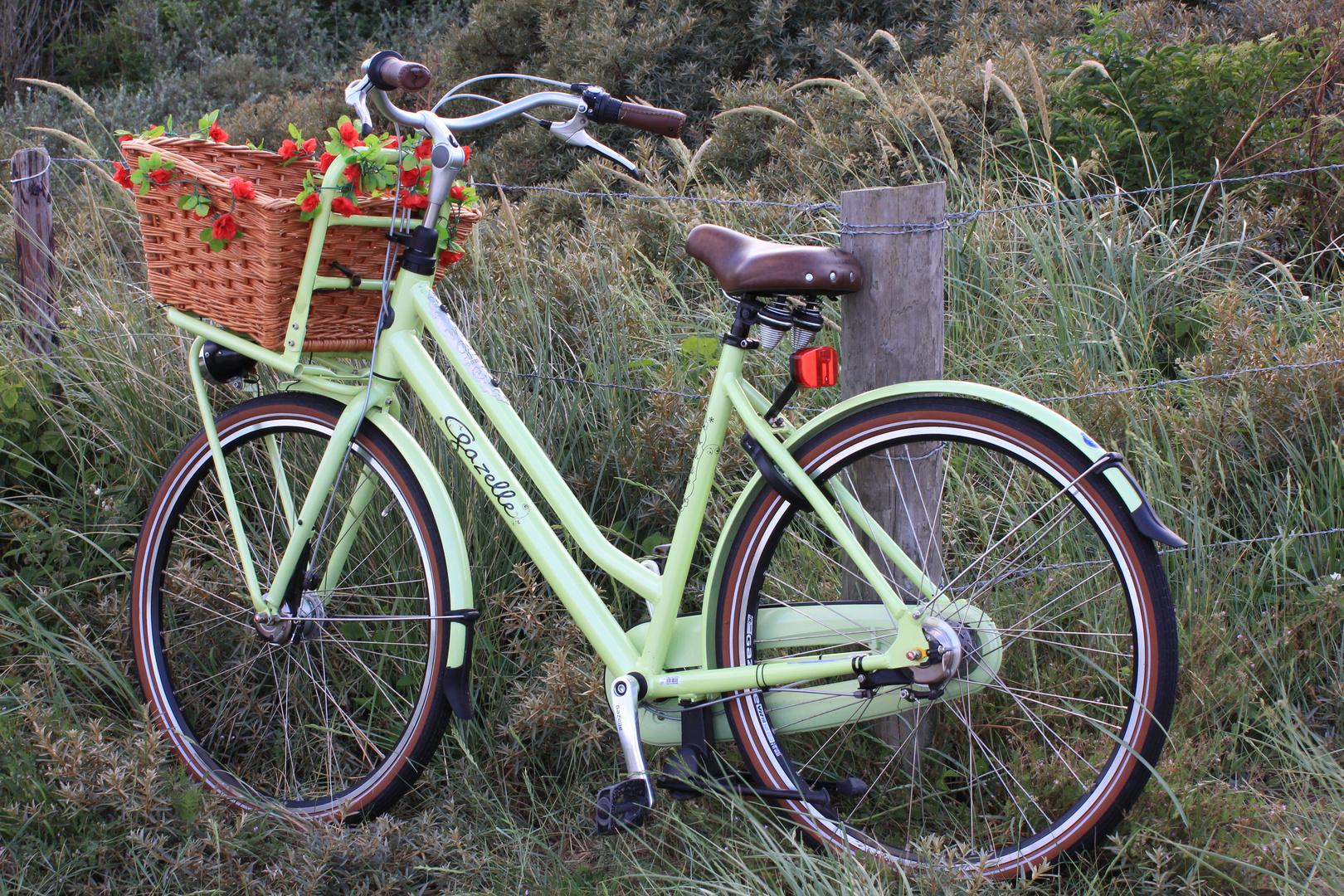 Mit dem Rad zum Strand