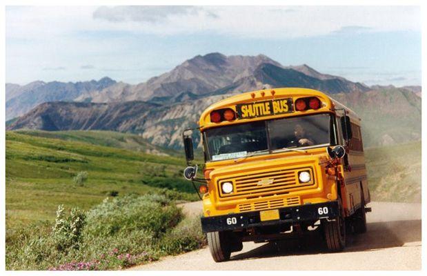 Mit dem Schulbus in den Denalipark