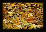 Mit den Blättern...