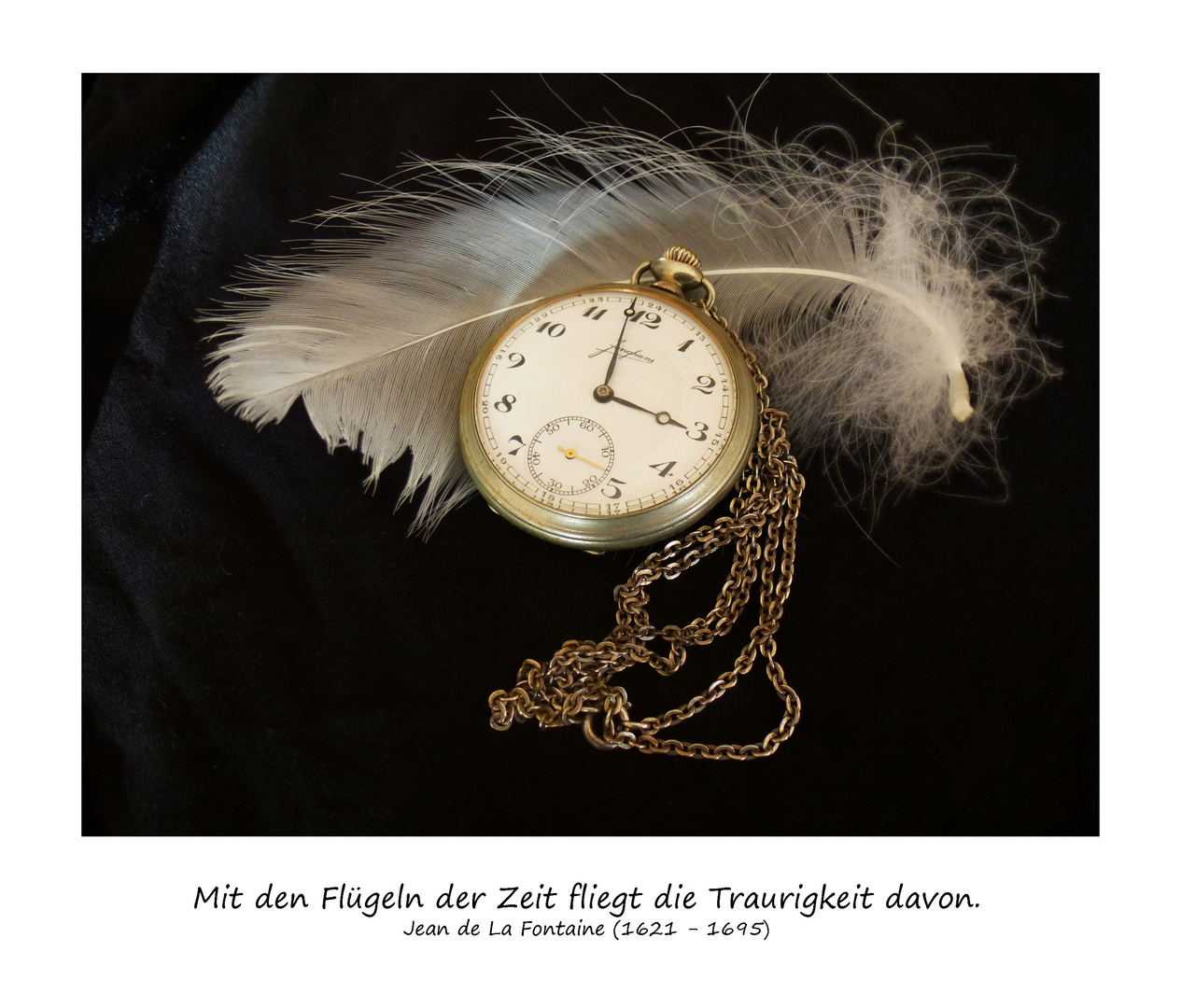 Mit den Flügeln der Zeit ...