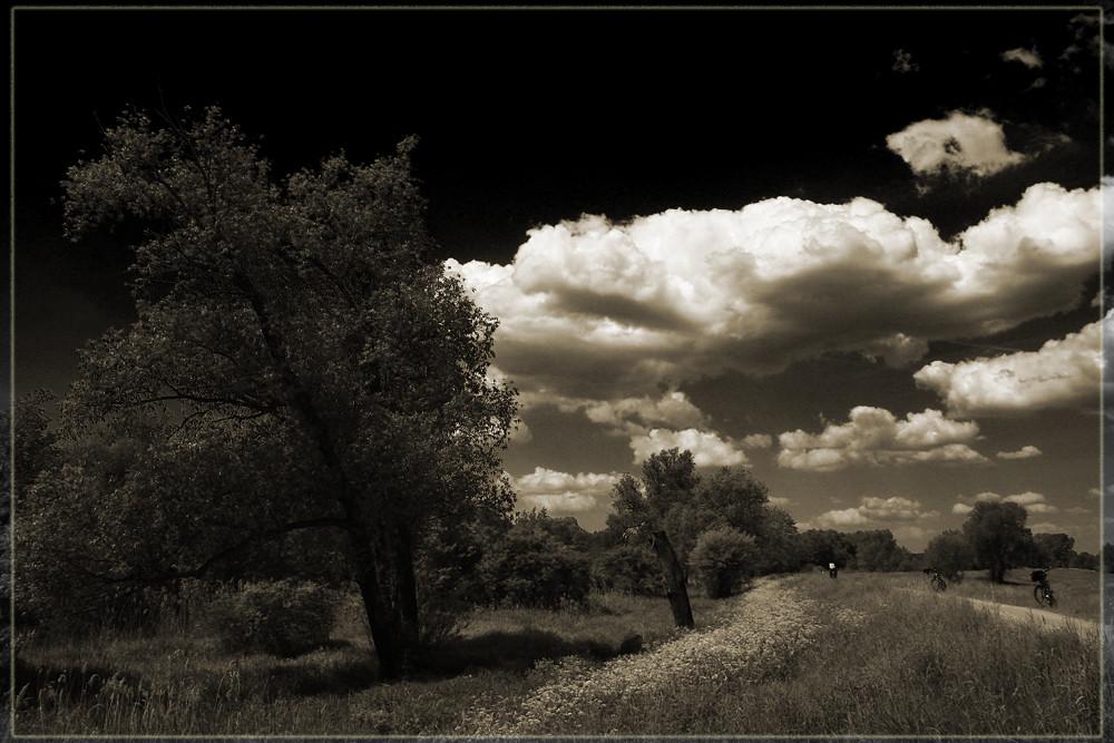 Mit den Wolken