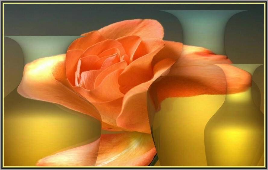 Mit einer Rose gespielt.