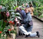...mit Gaby im Orchideenhaus ...