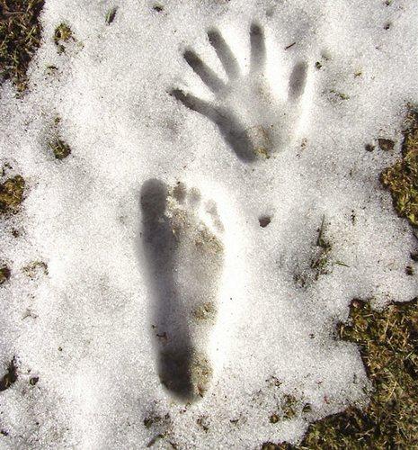 Mit Hand und Fuß