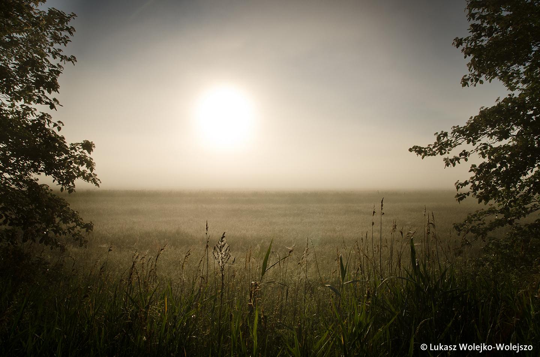 Mit Kamera und E-Bike zu Schätzen der Natur
