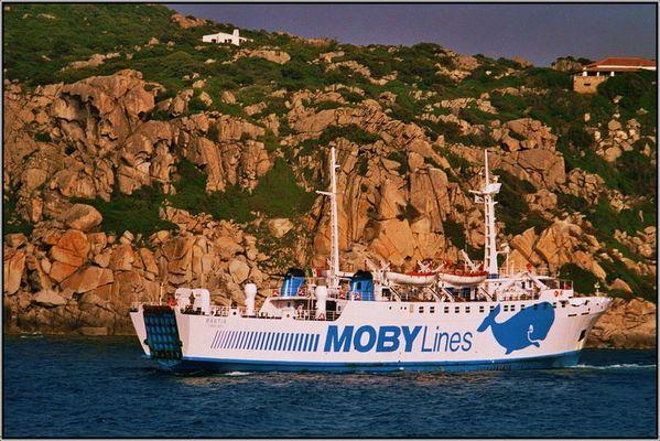 mit Moby Dick unterwegs..