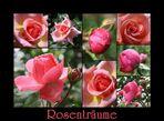 Mit Rosenträumen ins Wochenende
