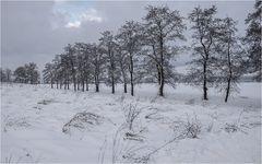 Mit Schnee bedeckt...