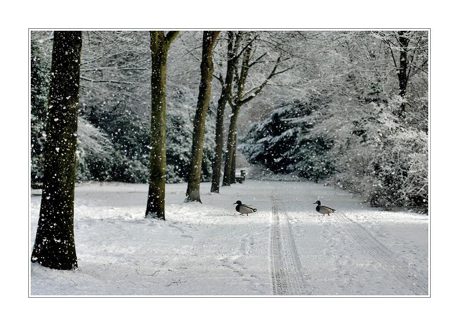 mit Schnee vom letzten Jahr...