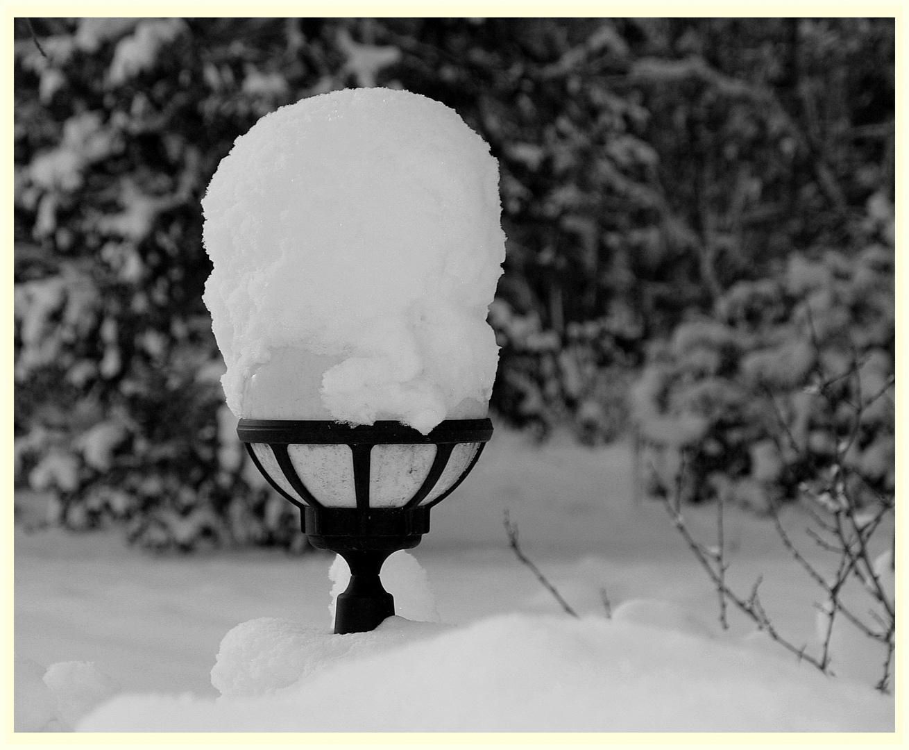 ~ mit Schneehaube~