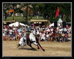 Mittelalterfest zu Jedenspeigen II