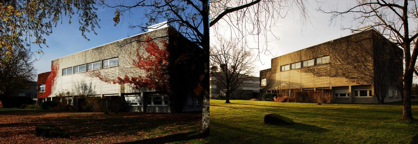 Mittelschulen Langenthal - im Herbst ....dann im Winter ....