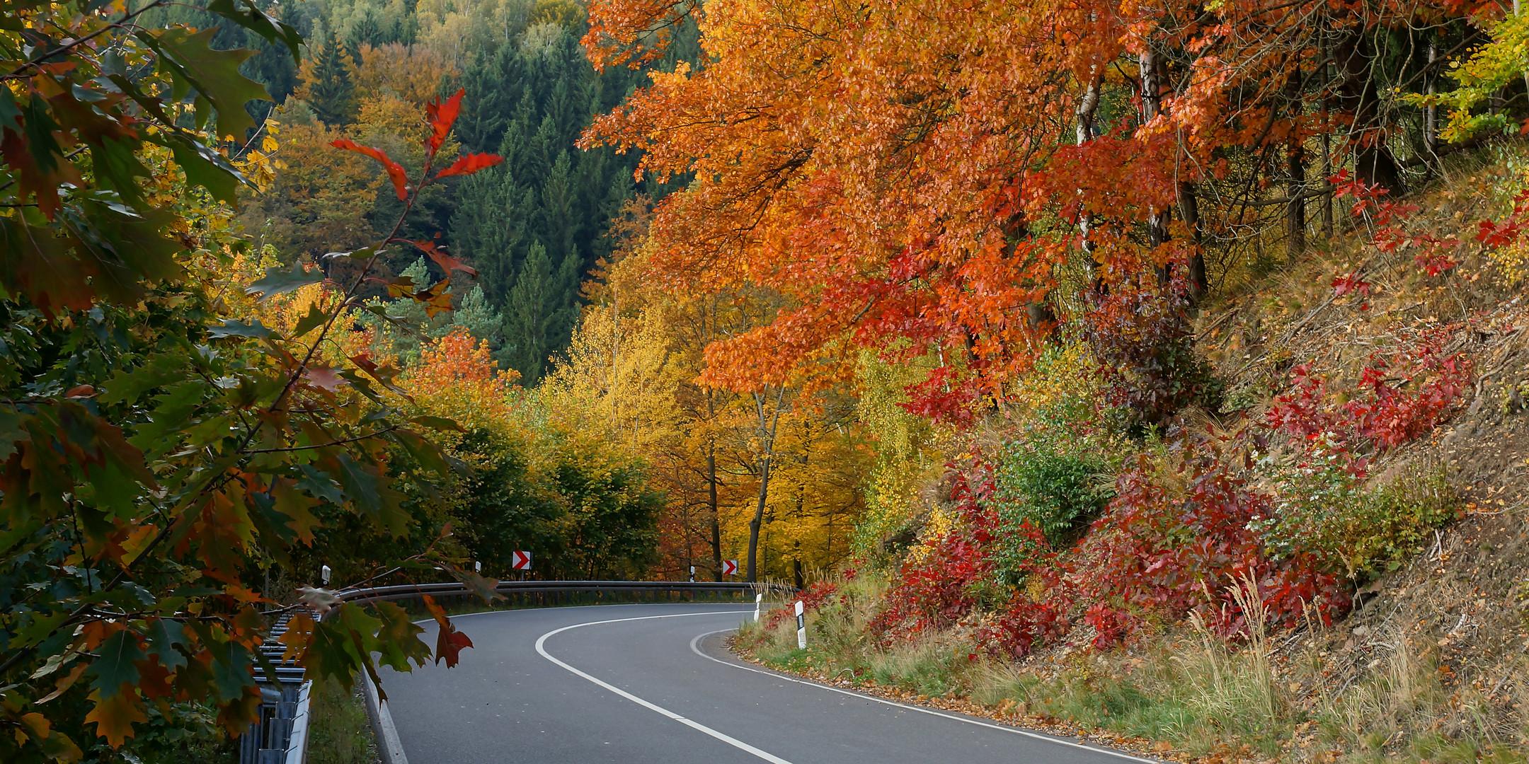 ... mitten durch den Herbst ...