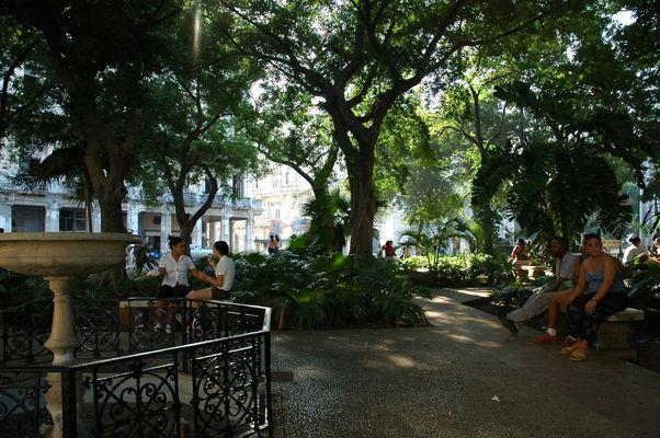Mitten in Havanna