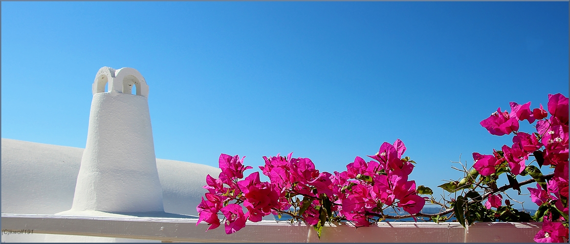 """Mittwochsblümchen"" aus Santorini"