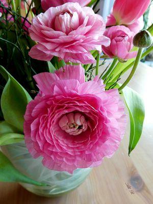 Mittwochsblümchen - Ranunkeln in einem Frühlings-Strauß