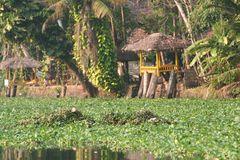 MLResort from waterside, Kerala Backwaters, bei Allepy