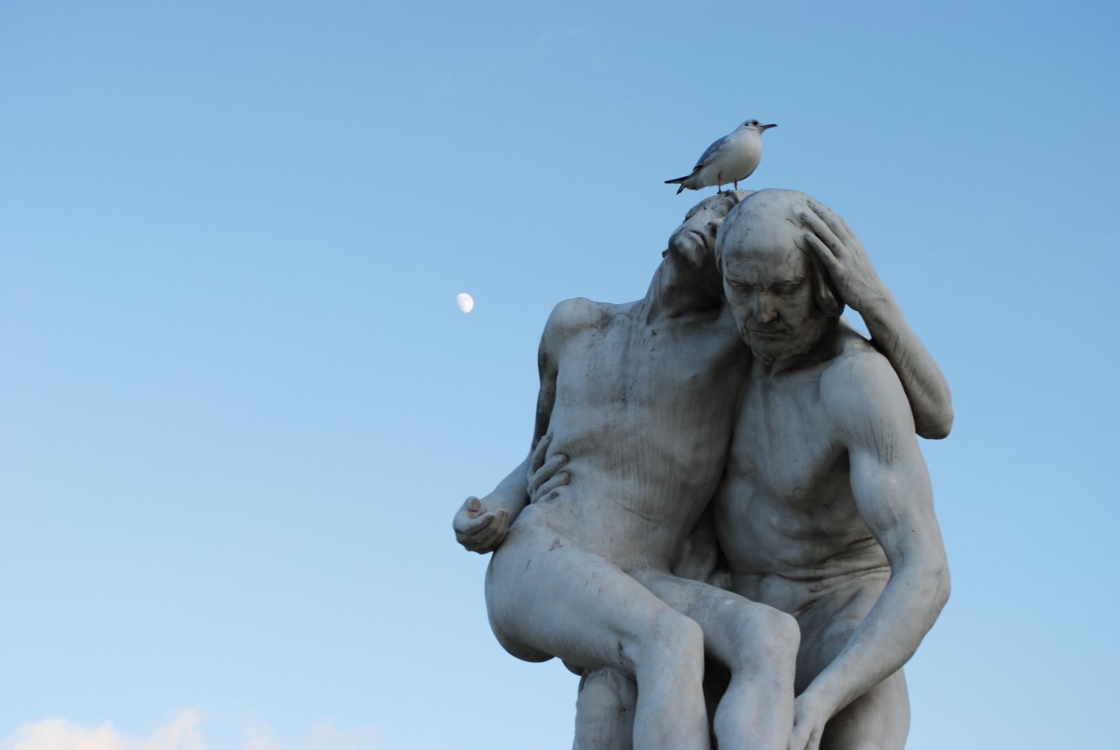 """""""Même quand l'oiseau marche on sent qu'il a des ailes."""""""