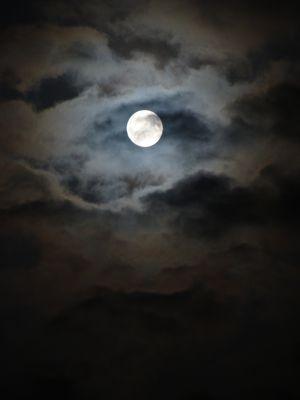 Mode crépuscule un soir de pleine lune