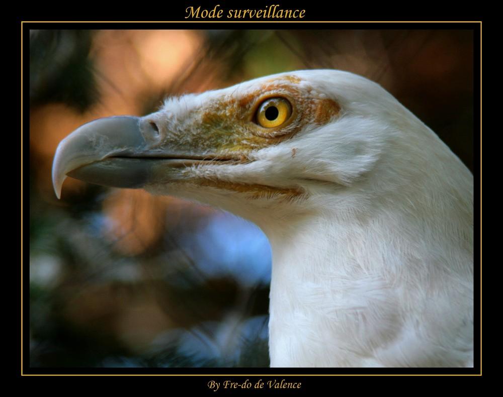 Mode surveillance