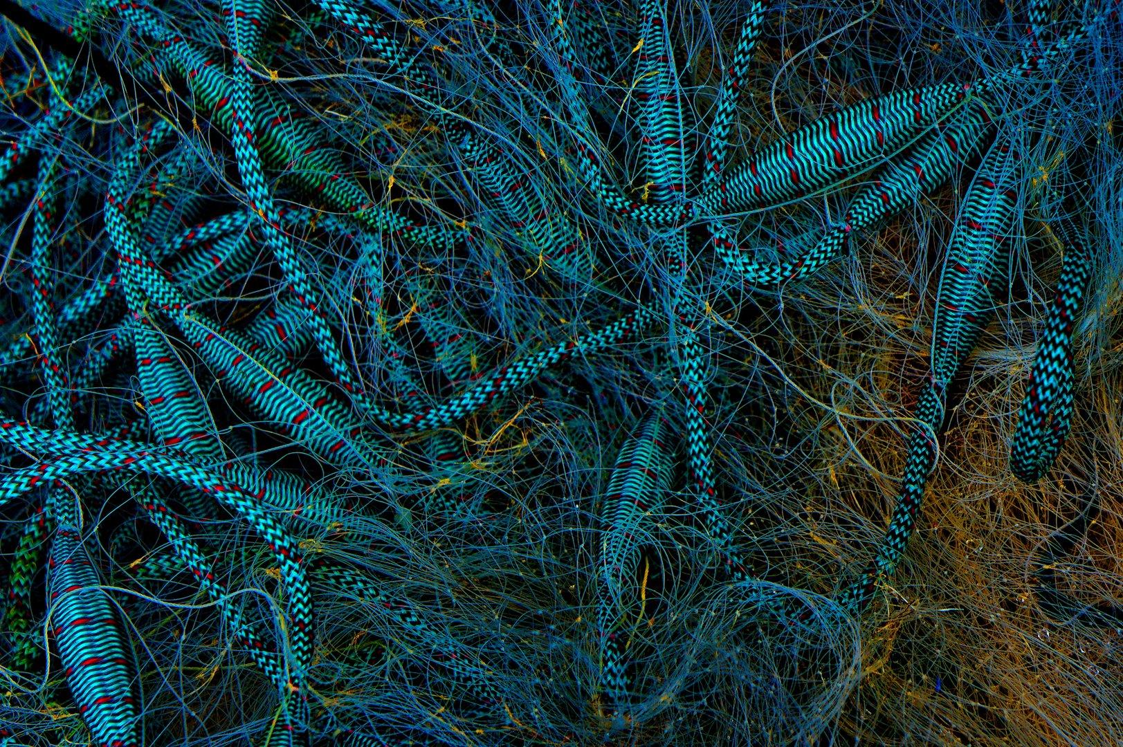 Moderne Netze