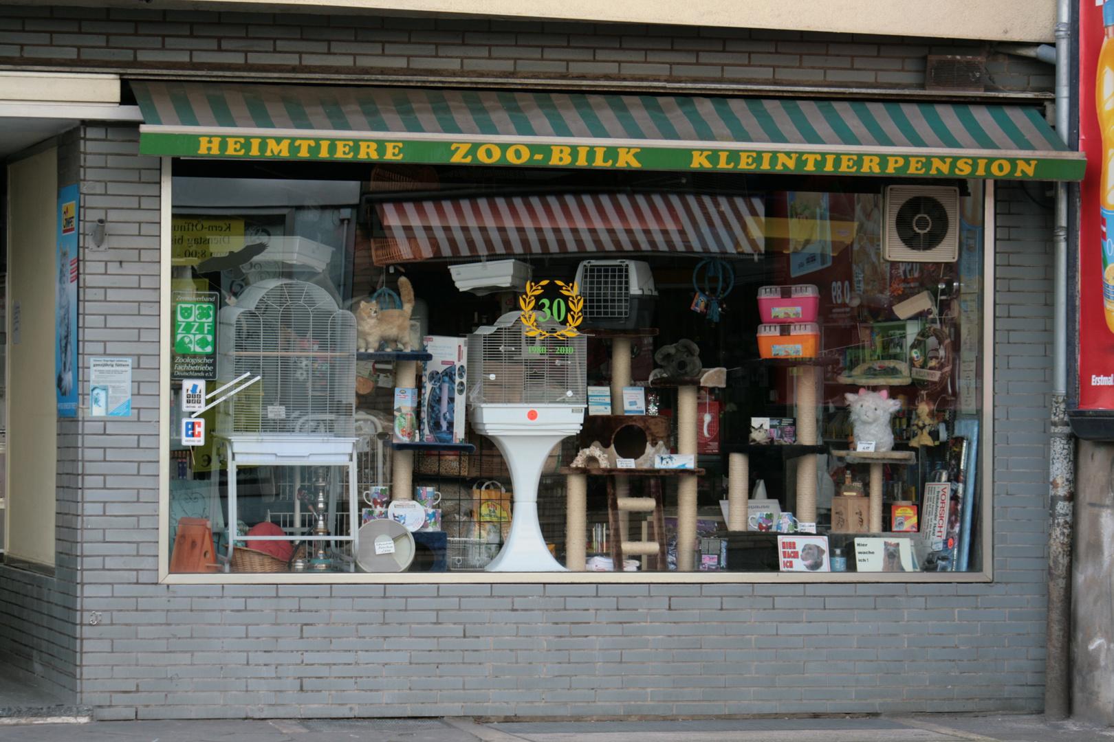 moderne schaufenstergestaltung foto bild reportage