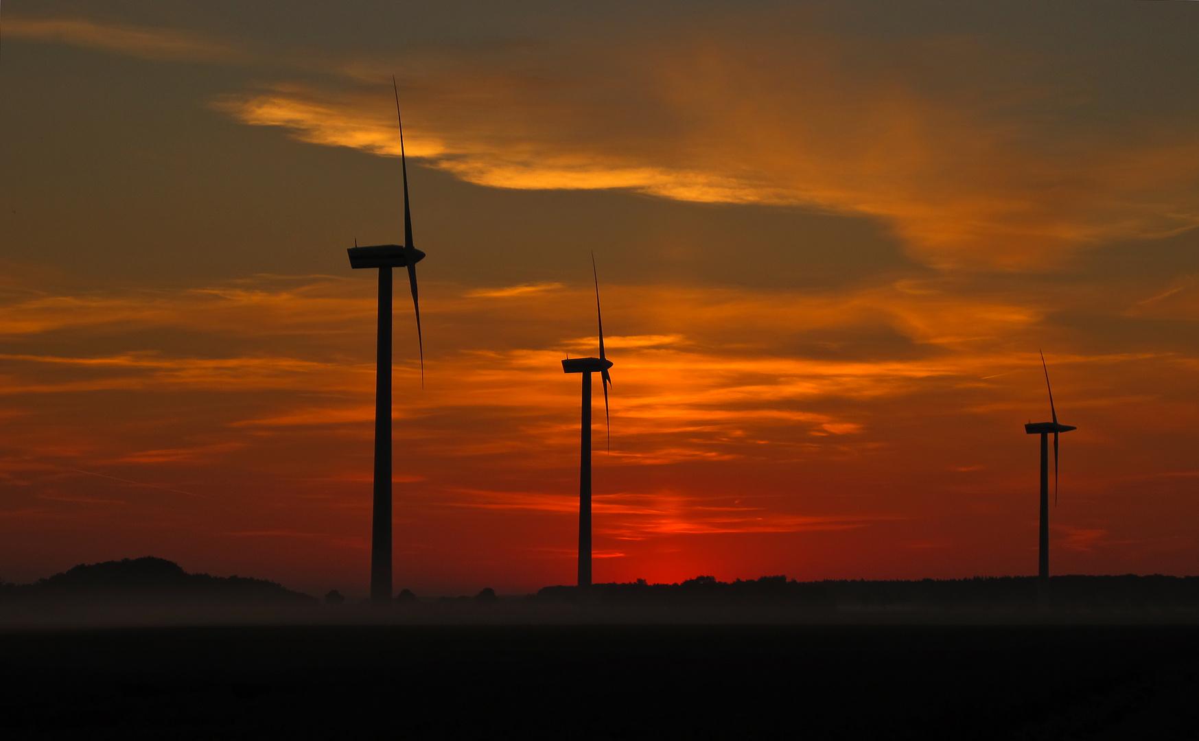 Moderne Windmühlen !!!