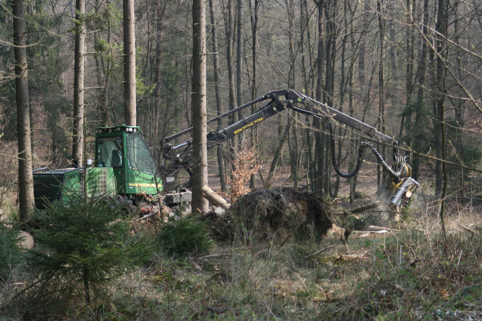 Modernes Holzfällerwerkzeug im Forsteinsatz !!