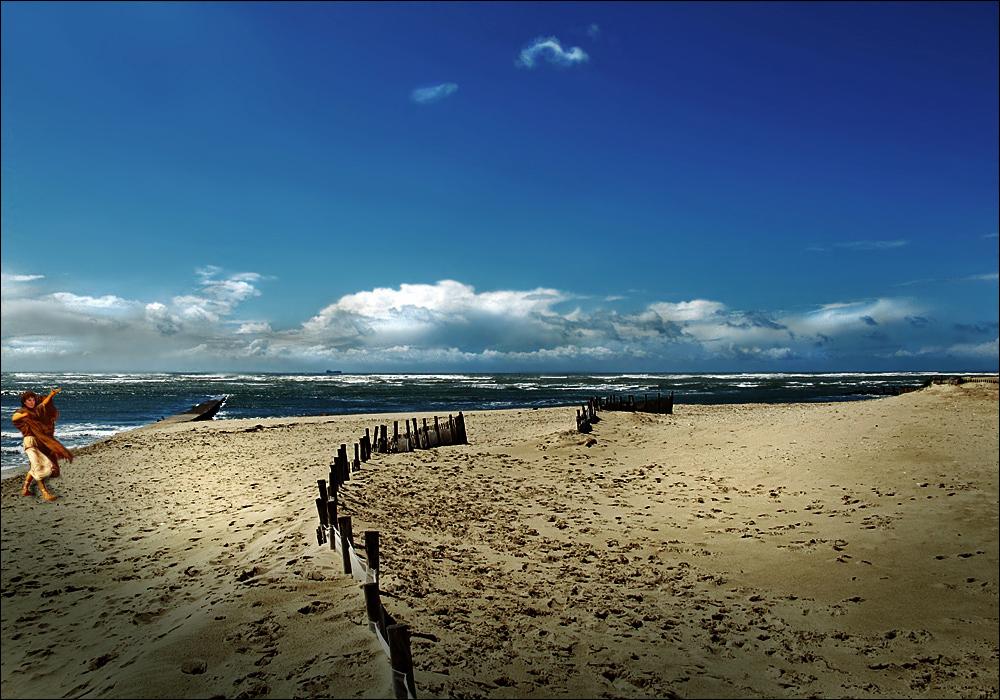 - möcht' das Meer oft vieles fragen -