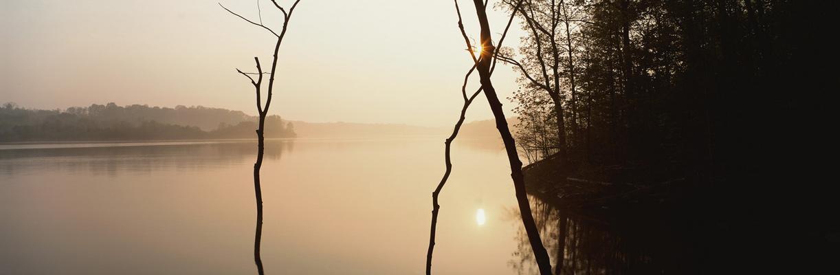 Möhne am Morgen -Panorama-