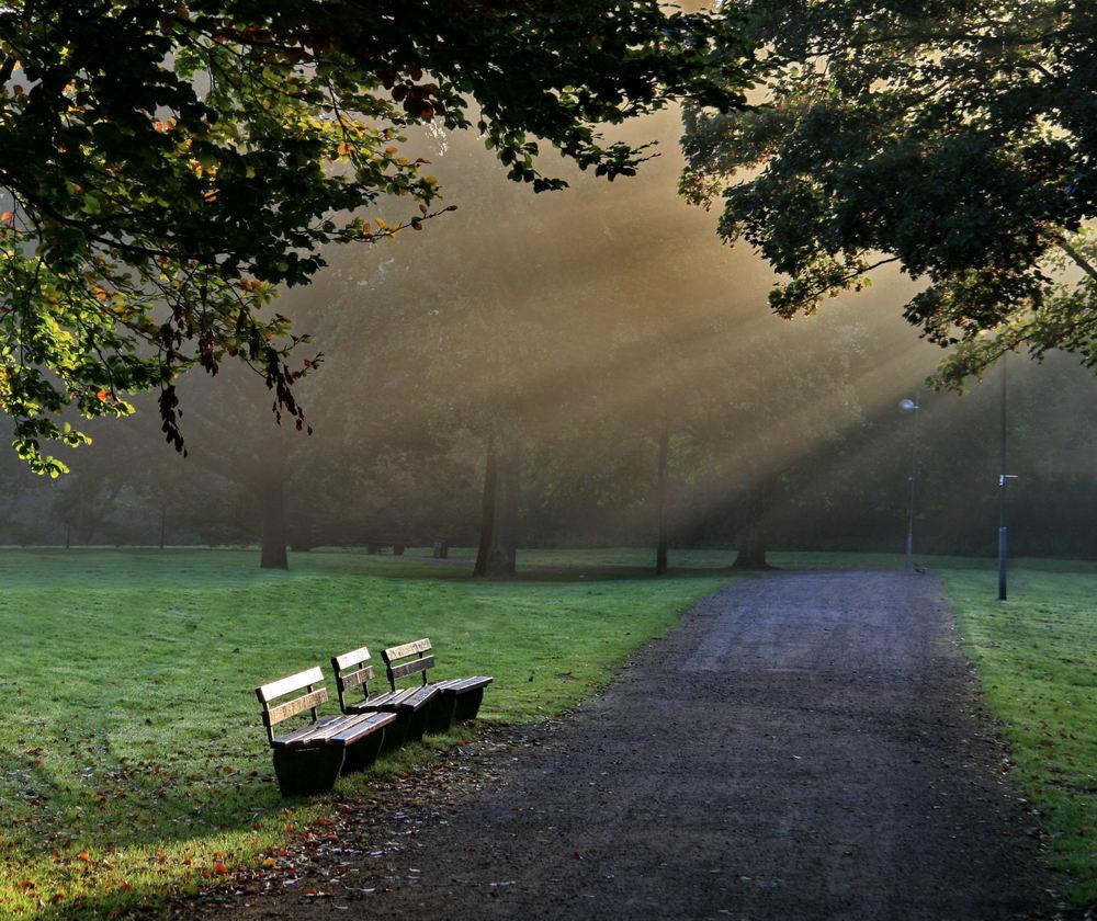 Moers Schlosspark 04