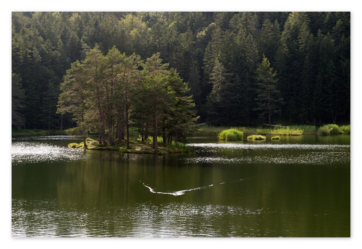 Möserer See