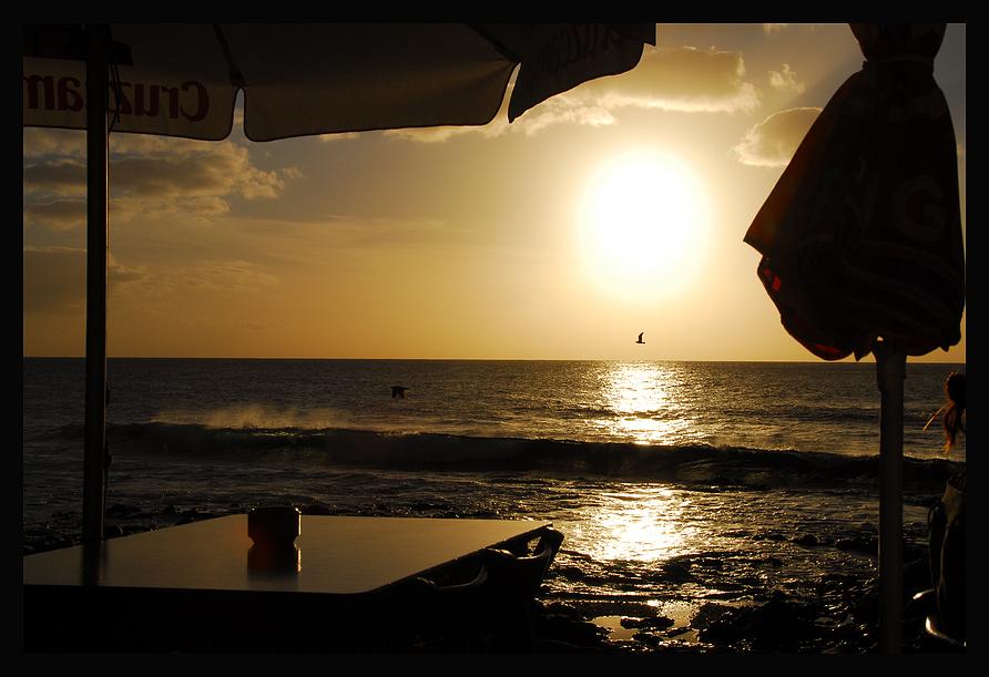Möwe und untergehende Sonne, Lanzarote 2007