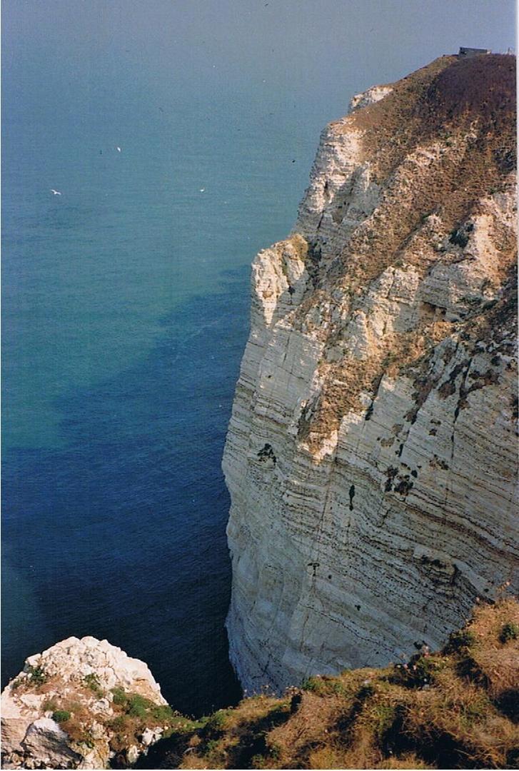 Möwenflug vor normannischer Steilküste