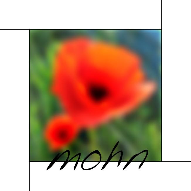 | Mohn |