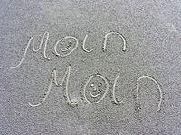 moin.moin