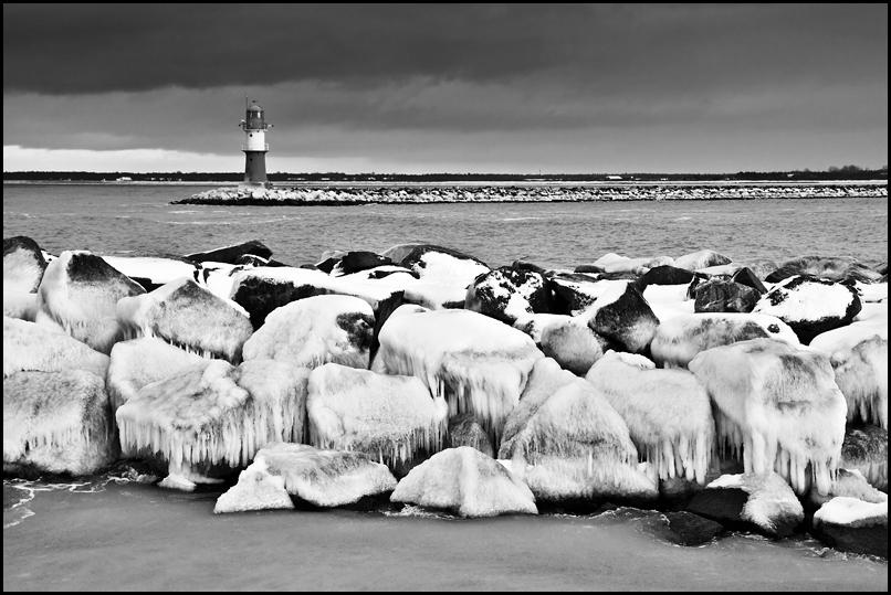 Mole im Winter