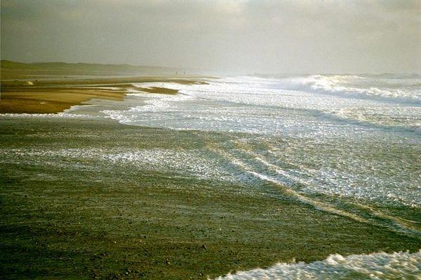 Moment einer Strandlandschaft