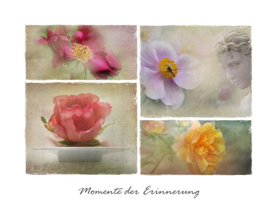 - Momente der Erinnerung -
