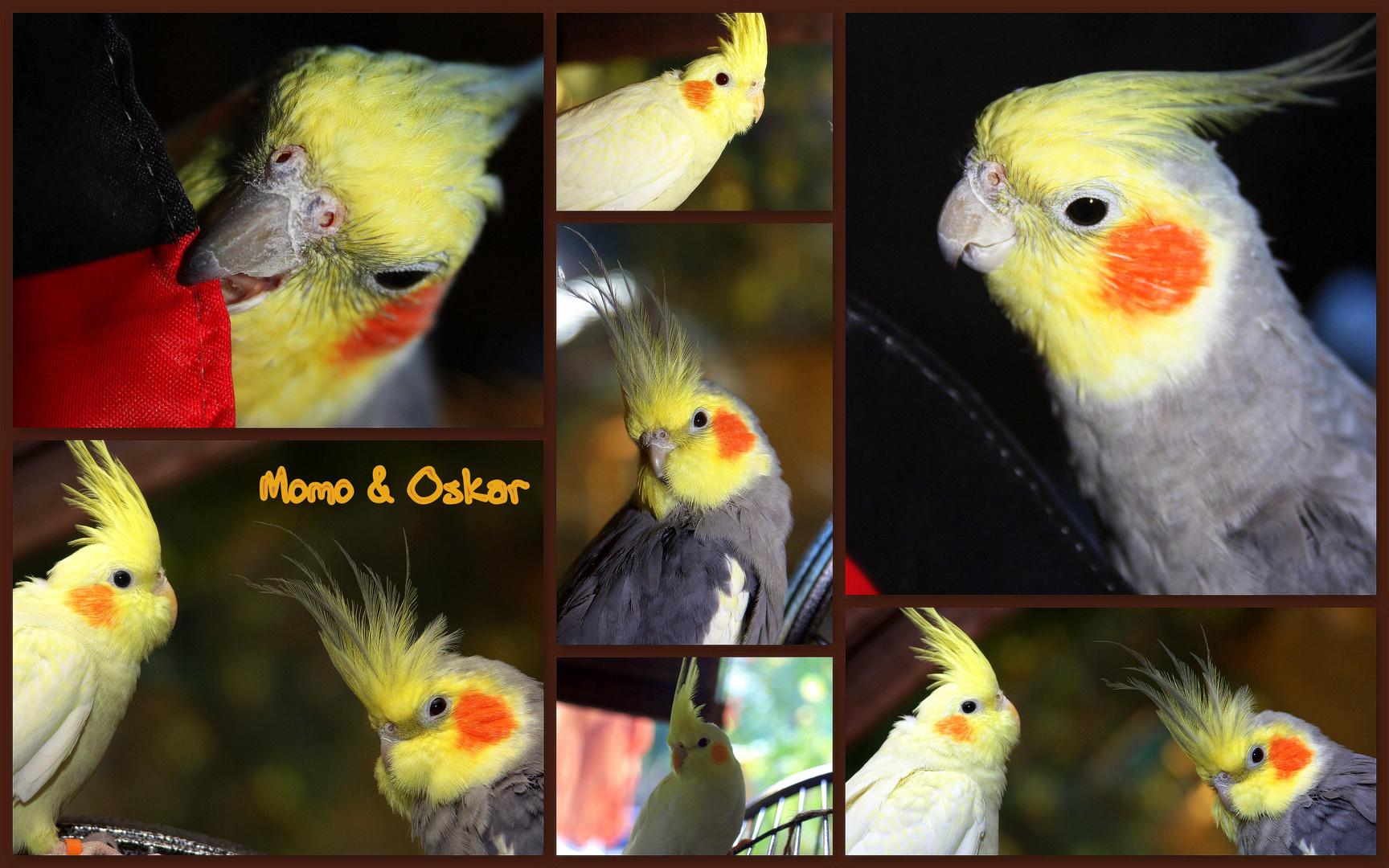 Momo & Oskar