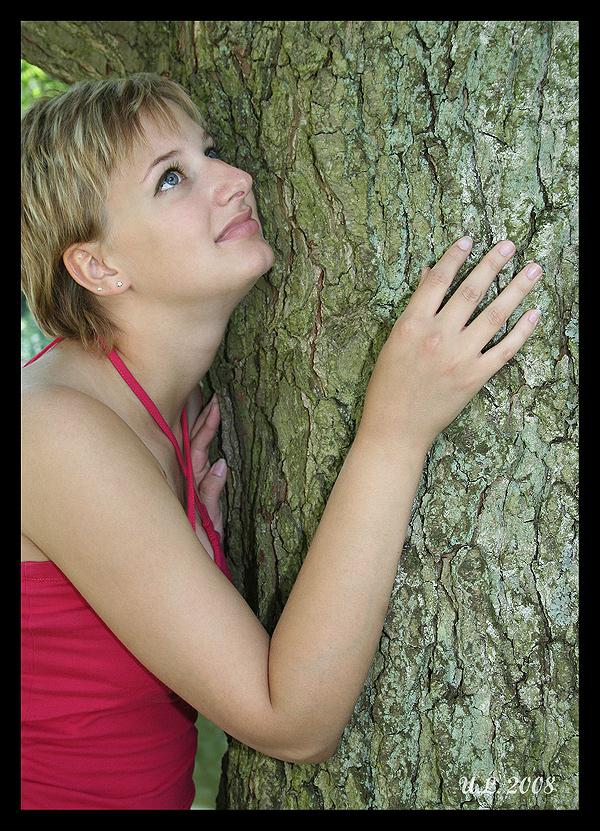 Mon ami - L'arbre