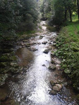 mon beau ruisseau !